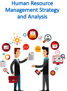 Human Resource Management Strategy and Analysis